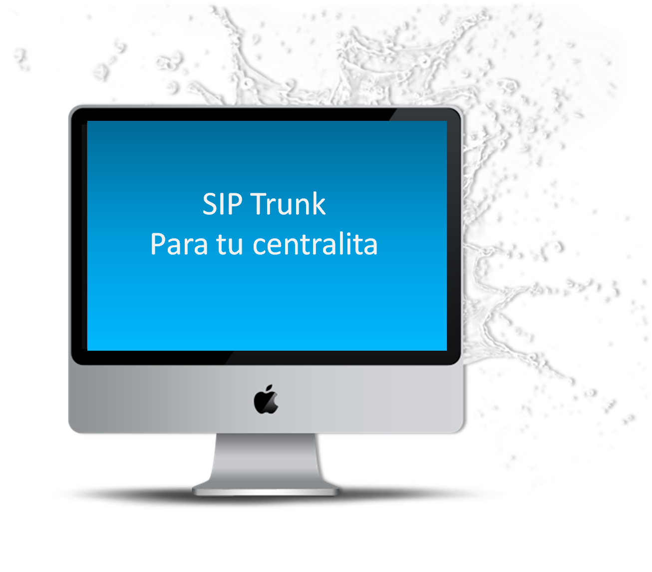 SIP Trunk 0